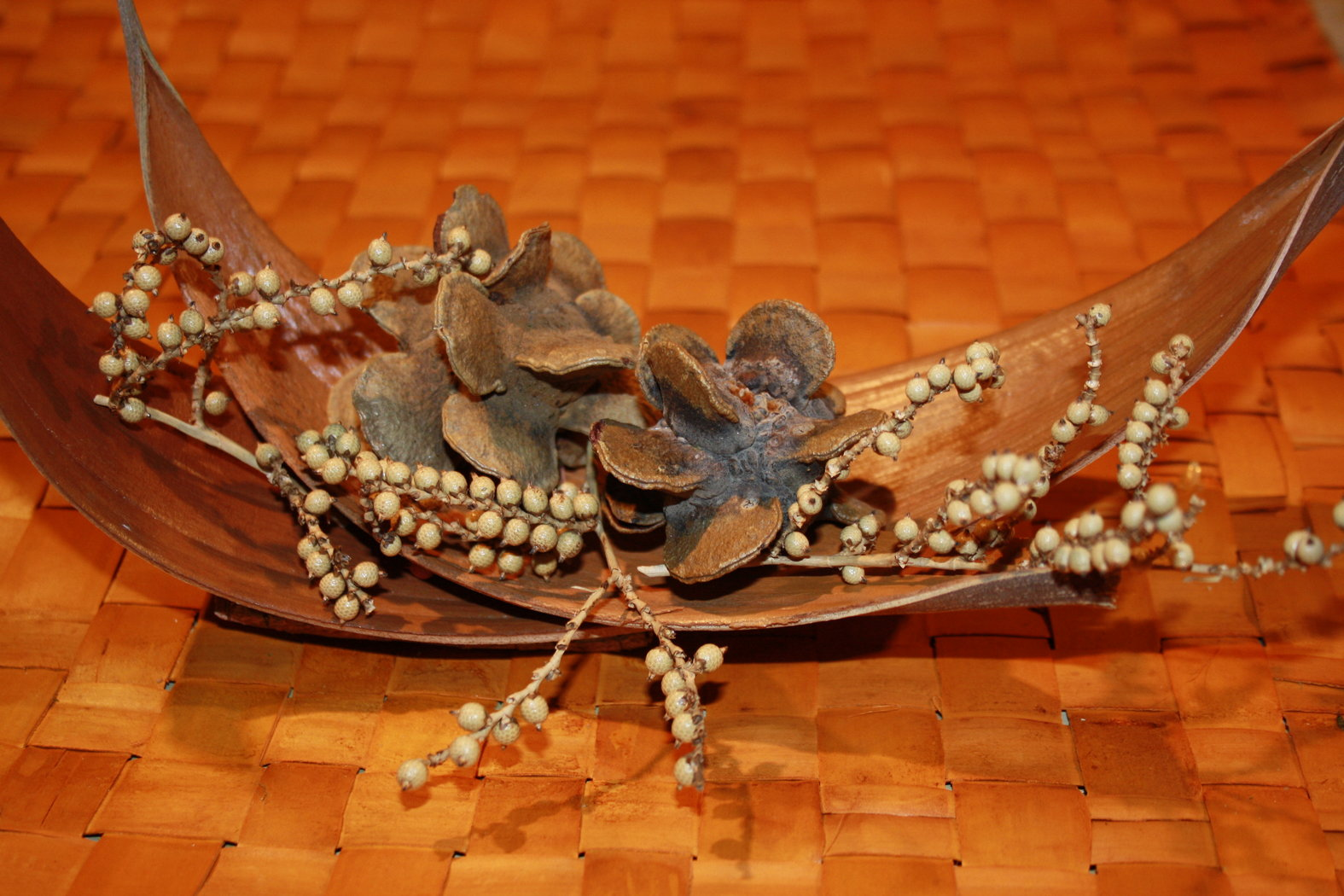 Deko mit cocosblatt bizarre natur for Baumwollzweige dekoration